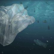 Plastic Monument #plasticmonument